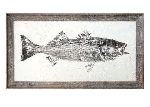Striped Bass Original on Petal Paper