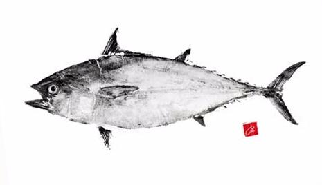 22 x 17 Limited Edition False Albacore Archival Print