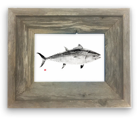 Small Framed Bluefin Tuna