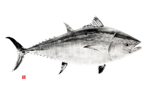 17 x 22  Bluefin Tuna Black ink Gyotaku Archival Print signed by artist