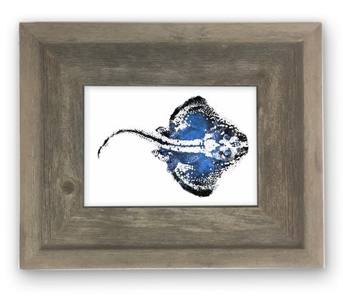 Small Framed Blue Skate