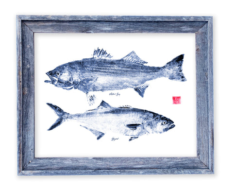 26 x 22 framed indigo striper and bluefish