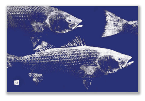 Striped Bass School Placemat