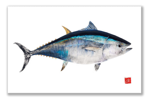 Bluefin Tuna colored Placemat