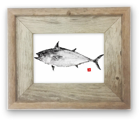 Small Framed False Albacore