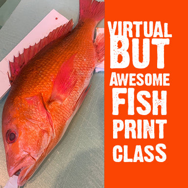 Fish print class- Online version