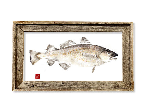 Framed codfish  26 x 16 framed print