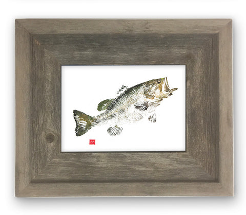 Small Framed largemouth bass