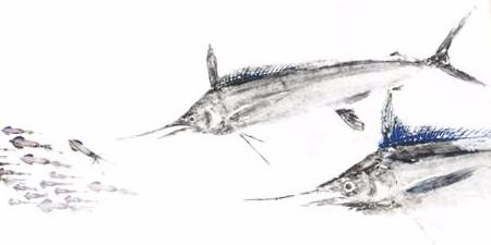 22x 17 Limited Edition White marlin School Gyotaku Archival Print