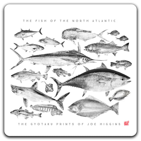 Multi Fish Coaster