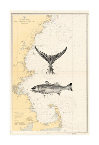 19x 13 Nautical Fish Prints (custom)