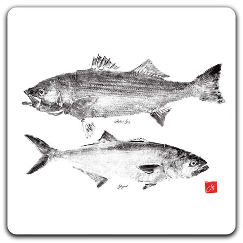 Striper and Bluefish Coaster