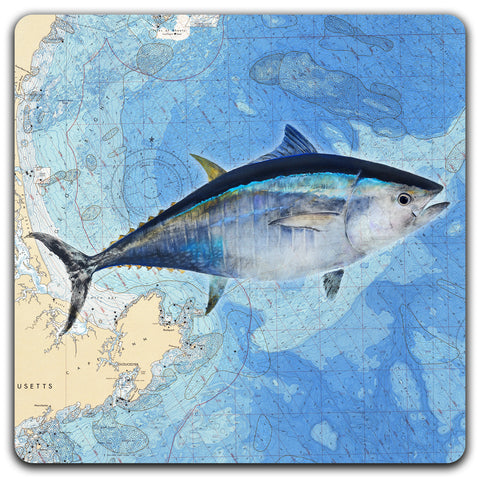 Tuna on Chart Coaster