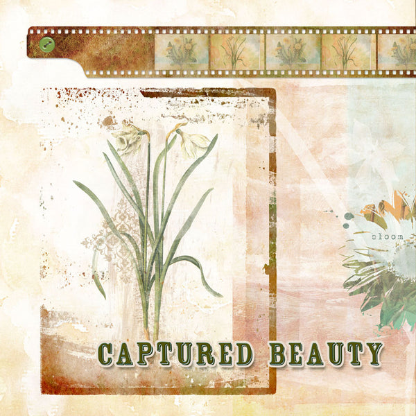 Planting Hope Click.Stamps