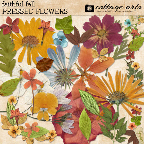 Faithful Fall Pressed Flowers
