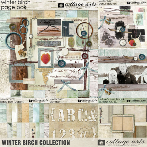 Winter Birch Collection