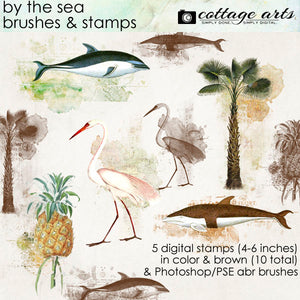 By the Sea Brushes & Stamps