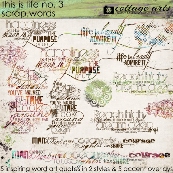 This is Life 3 Scrap.Words