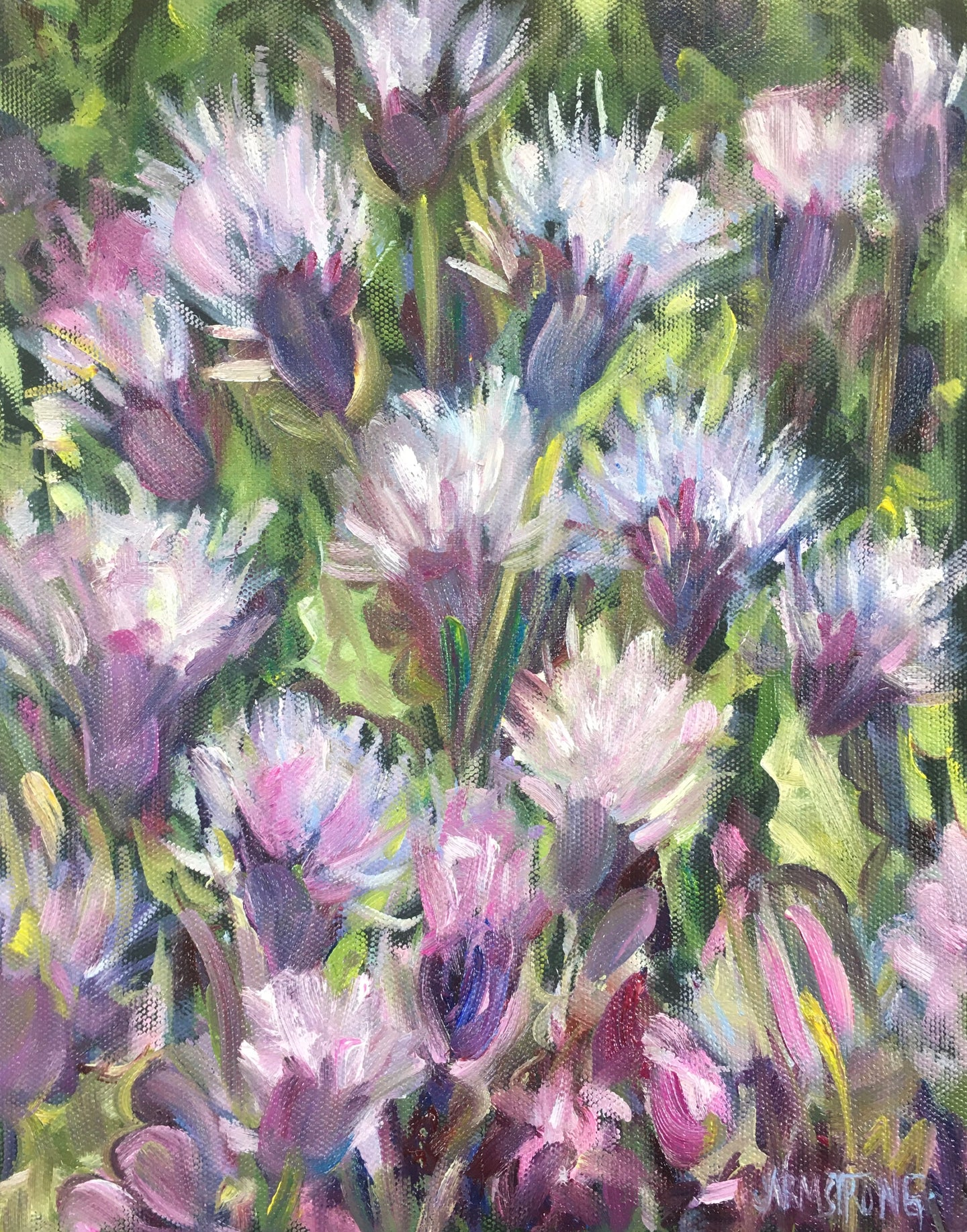 Thistles from Melrose, 10 x 8