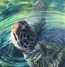 "Load image into Gallery viewer, SET of 7 ART CARDS - ""Maui Turtle"""