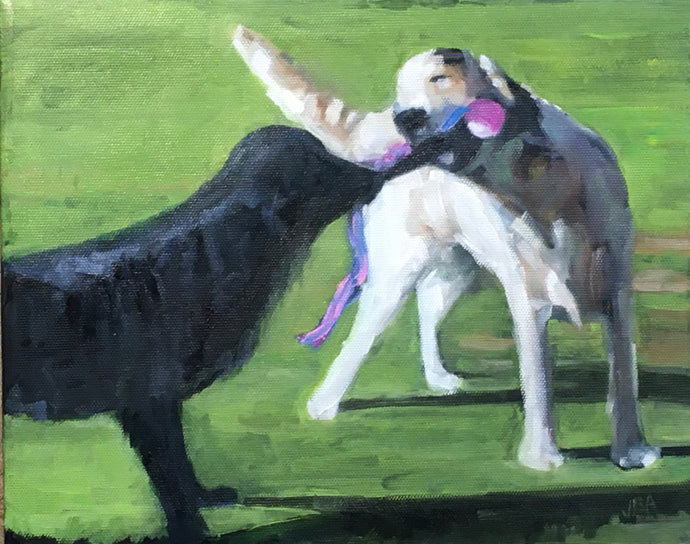 Tug Of War, 8 x 10