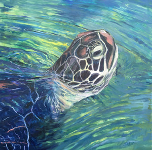 "SET of 7 ART CARDS - ""Maui Turtle"""