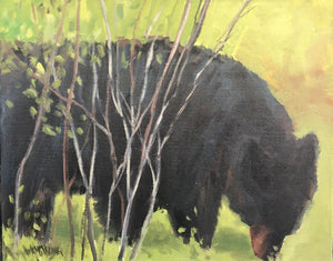 "Banff Bear, 6 x 8"" Oil"