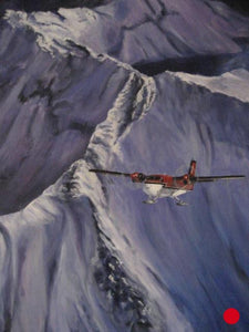 "Twin Otter, 30 x 24"" oil"