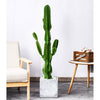 Artificial Indoor Cactus Tree with 6 Heads - 120cm - Notbrand