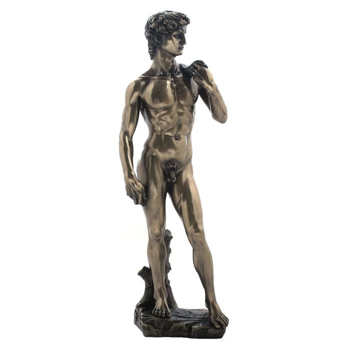 Michelangelo's David Bronze Figurine