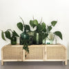 Grace Rattan Entertainment TV Unit Natural - Notbrand