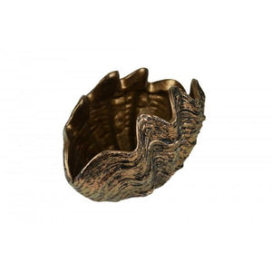 Lithia Clam Shell Sculpture Planter - Notbrand