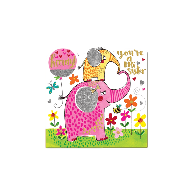 Rachel Ellen Greetings Cards You're A Big Sister Girls Congratulations Card
