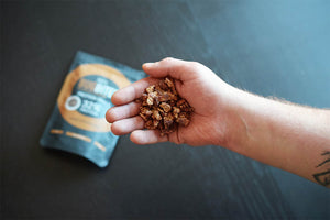 handful of cricket protein snacks