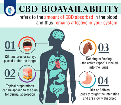 CBD Bioavailability: What is it and why does it matter?