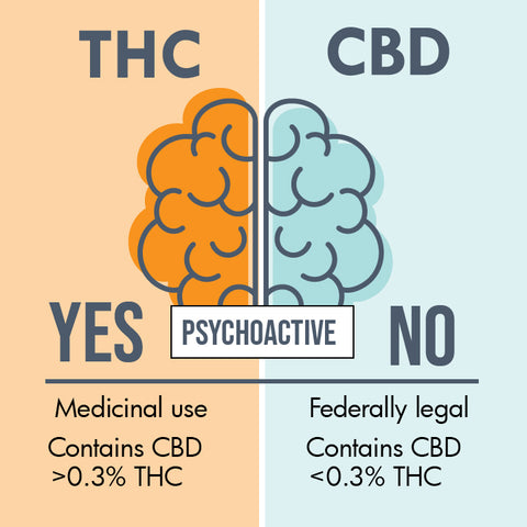 Is THC or CBD Psychoactive