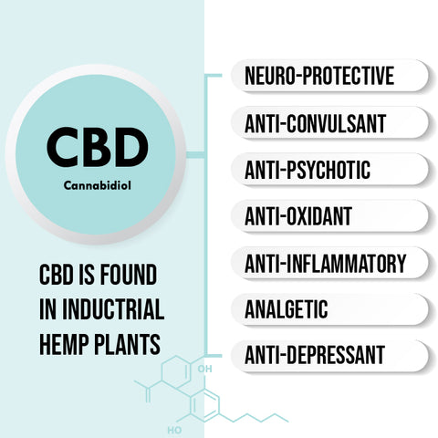 What is CBD? CBD is found in inductrial hemp plant