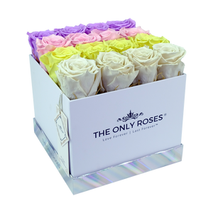 Fading Color Preserved Roses | Square White Huggy Rose Box