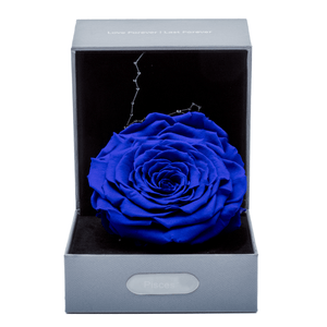 Constellation Rose Box