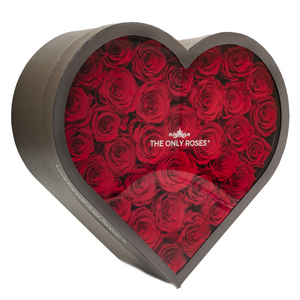 d09335741b5 The Only Roses® | Real Preserved Roses That Last At Least A Year ...