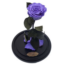 Load image into Gallery viewer, Purple Preserved Rose | Beauty and The Beast Glass Dome - The Only Roses