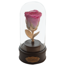 Load image into Gallery viewer, Pink Preserved Rose | Beauty and The Beast Music Globe - The Only Roses