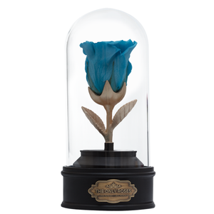 Blue Preserved Rose | Beauty and The Beast Music Globe - The Only Roses