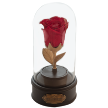 Load image into Gallery viewer, Red Preserved Rose | Beauty and The Beast Music Globe - The Only Roses