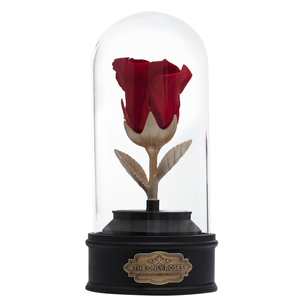 Red Preserved Rose | Beauty and The Beast Music Globe - The Only Roses