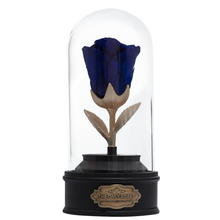 Load image into Gallery viewer, Royal Blue Preserved Rose | Beauty and The Beast Music Globe - The Only Roses