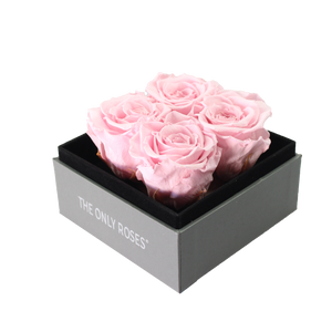 Light Pink Preserved Roses | Small Square Classic Grey Box - The Only Roses