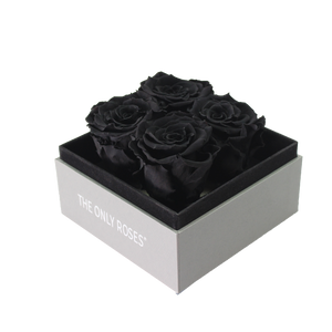 Black Preserved Roses | Small Square Classic Grey Box - The Only Roses