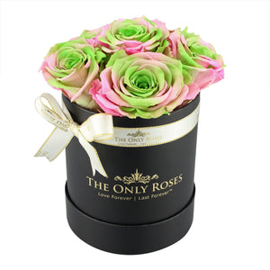 Pink & Green Preserved Roses | Small Black Round Rose Hat Box