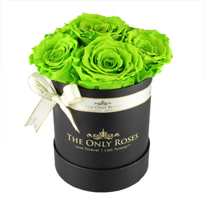 Green Preserved Roses | Small Black Round Rose Hat Box